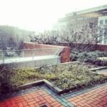 Havazás, erős szél - figyelmeztetést adtak ki az ország nagy részére