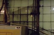 Gyomorforgató állapotok uralkodtak a csongrádi sütőüzemben, bezáratta a Nébih – videó