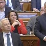 """Orbán Jakab Péternek: """"Jó nyeldeklést, frakcióvezető úr"""""""