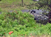 A szombathelyi kézicsapat elnöke és családja ült az autóban, amelyik lezuhant az M1-es autópályáról