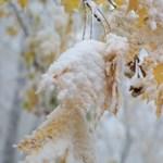 Véget ér az enyhe idő, lehűlést, havazást hoz az újév