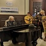 Alpakákkal rendeztek koncertet a pécsi pályaudvaron