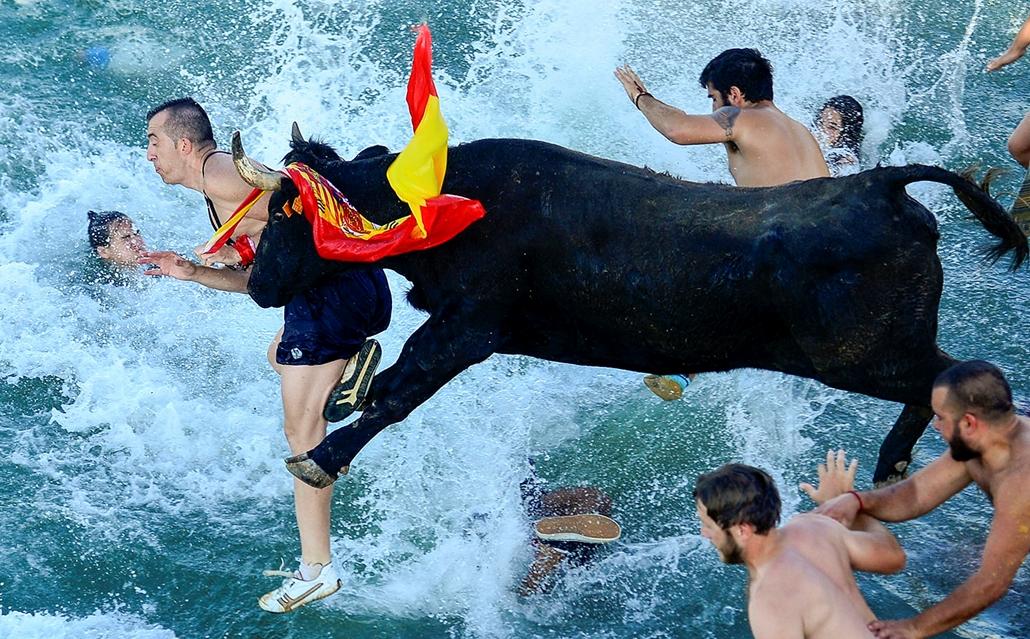 """AFP - Nagyítás - Állati 2016 - 16.12.31. - Nem csak Pamplonában, hanem Denia városában is nagy népszerűségnek örvend a féltonnás állatok elől való menekülés. Alicante tartomány tengerparti településén a """"Bous a la Mar""""-nak nevezett versenyen nemcsak a bik"""