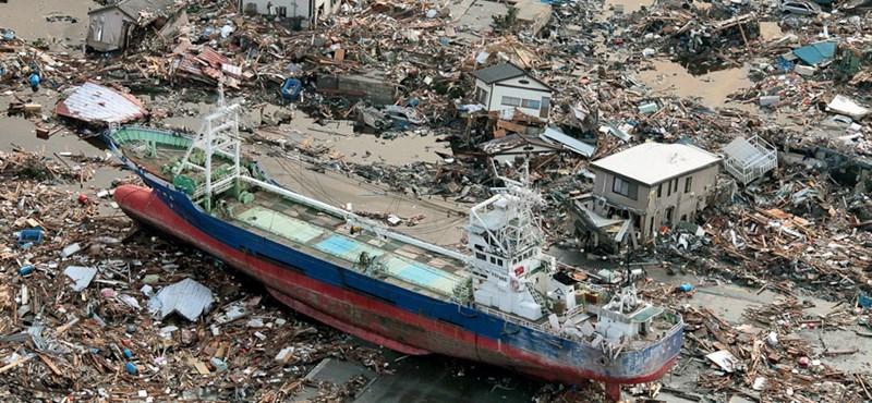 Megérkezett Amerika partjaihoz a japán cunami hordaléka