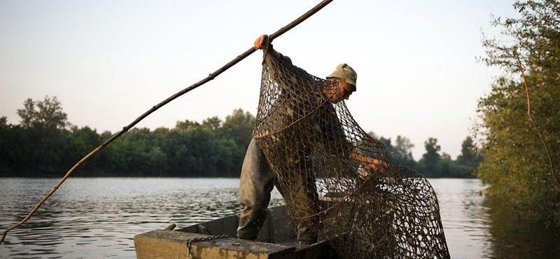 Az utolsó halász a megyében – fotógaléria