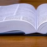 Megbízható fordítót kerestek? Újabb remek oldalt ajánlunk
