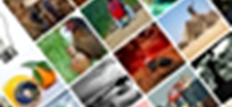 Photoshop bajnokság: eredményhirdetés