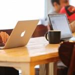 Friss kutatás: minden második gyakornoknak állást ajánlanak a cégek