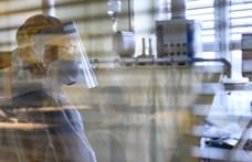 Már az állatkísérleteknél tart a magyar koronavírus elleni gyógyszer fejlesztése