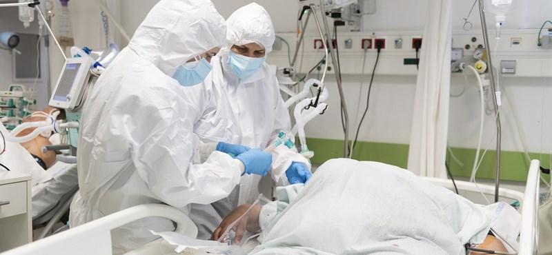 Covid-osztályos orvos: Zsákbamacska, hogy melyik beteggel mi történik