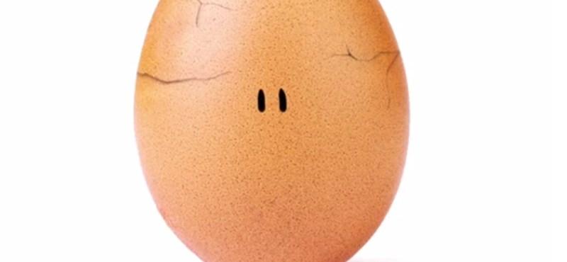 A tojás, ami lenyomta Kylie Jenner Instagramját, és jót tesz nekünk
