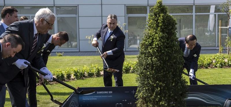 61598a79a78e Gazdaság: A magyar gazdaság újabb szektora kerül külföldi befolyás ...