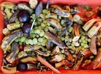 Szeretettel Brüsszelből: közösen küzdenek a belgák a élelmiszerpazarlás ellen