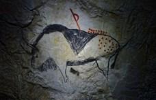 Kiirtottuk a nagyobb állatokat – így fejlődhetett ki az emberi agy