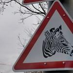 Látta már ezt a rendkívül találó közlekedési táblát Budapesten?