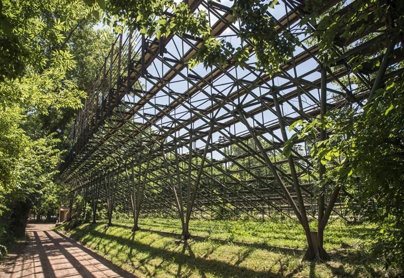 A fákat letarolták, de nem épül a teniszstadion a Margitszigeten