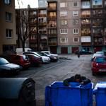 Hiába az Ab szava: kukázni továbbra is tilos Kaposváron