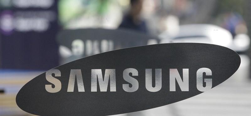 Sokba kerül a Samsungnak a befolyásos unoka németországi lovastúrája
